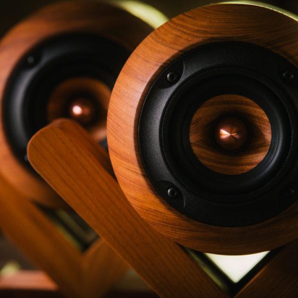 Woodcraft Speaker